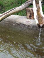 derechos de agua